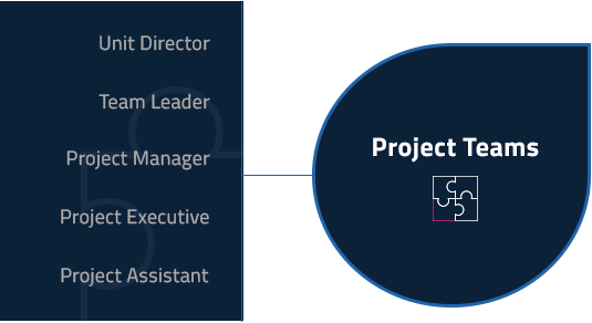 Unit Director, Team Leader, Project Manager, Project Assistant